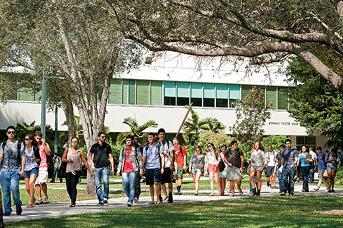 About University Of Miami
