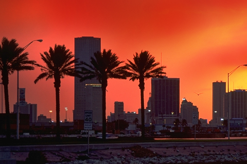Red Miami Skyline