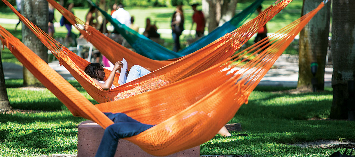 UM students studying in hammocks