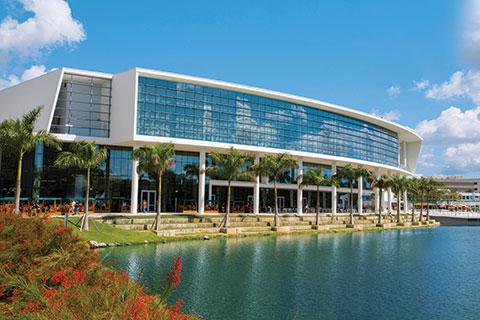 Kinesiology at University of Miami